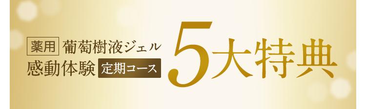 【薬用葡萄樹液ジェル感動実感 定期コース】5大特典