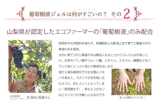 薬用 葡萄樹液ジェル商品ページ3